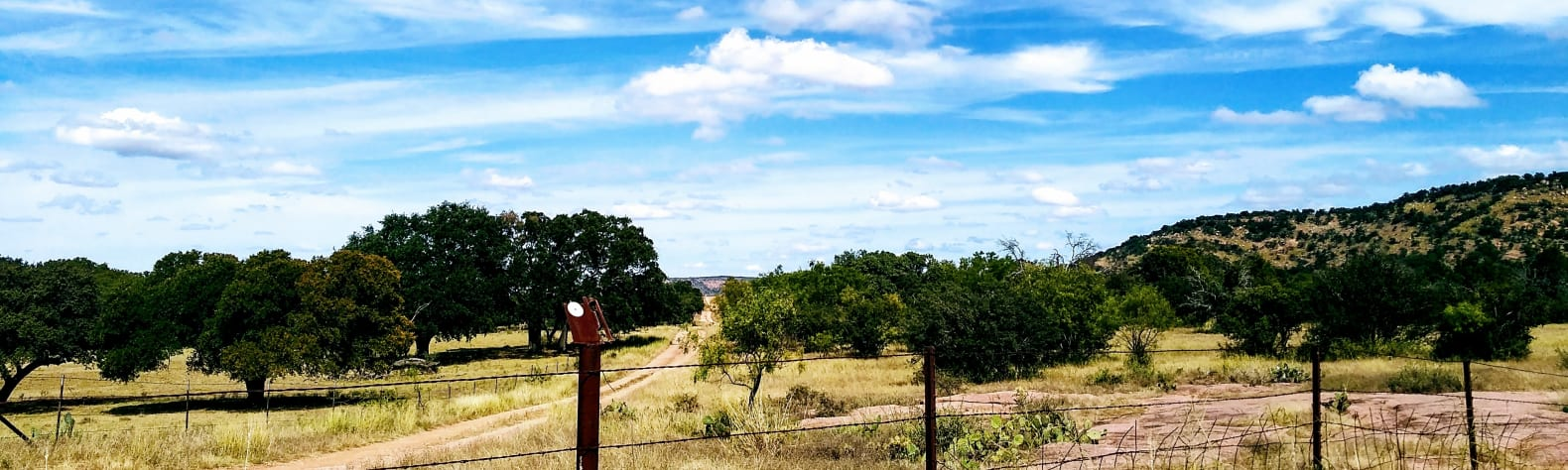 Maggi W.'s Land