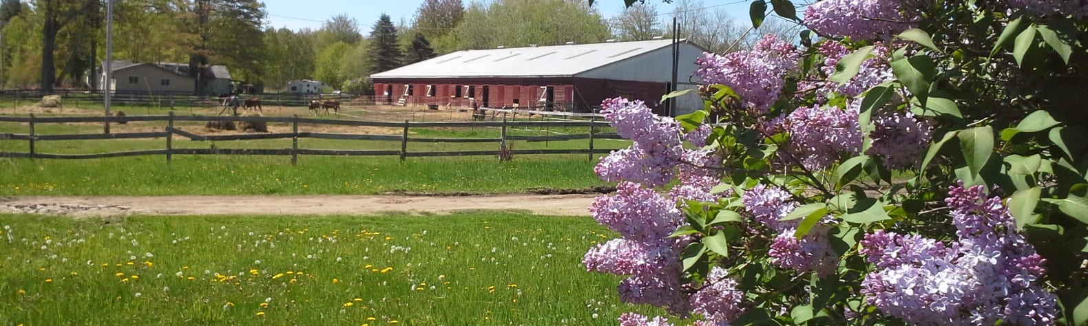 Double J Ranch Horse/Hobby Farm