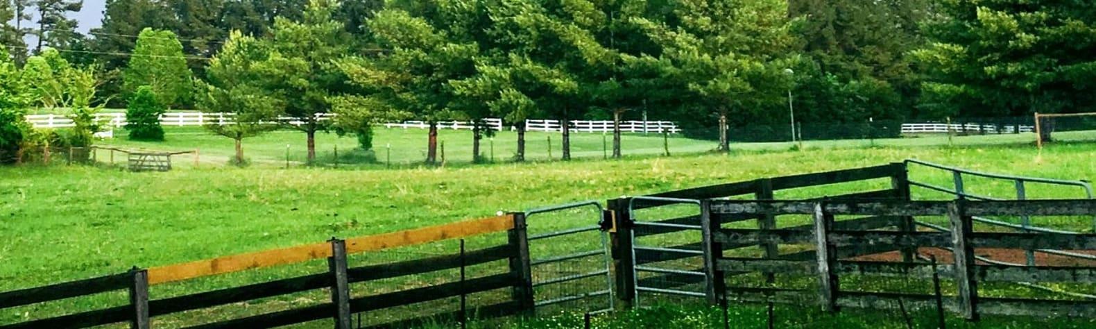 Cool Creek Farm