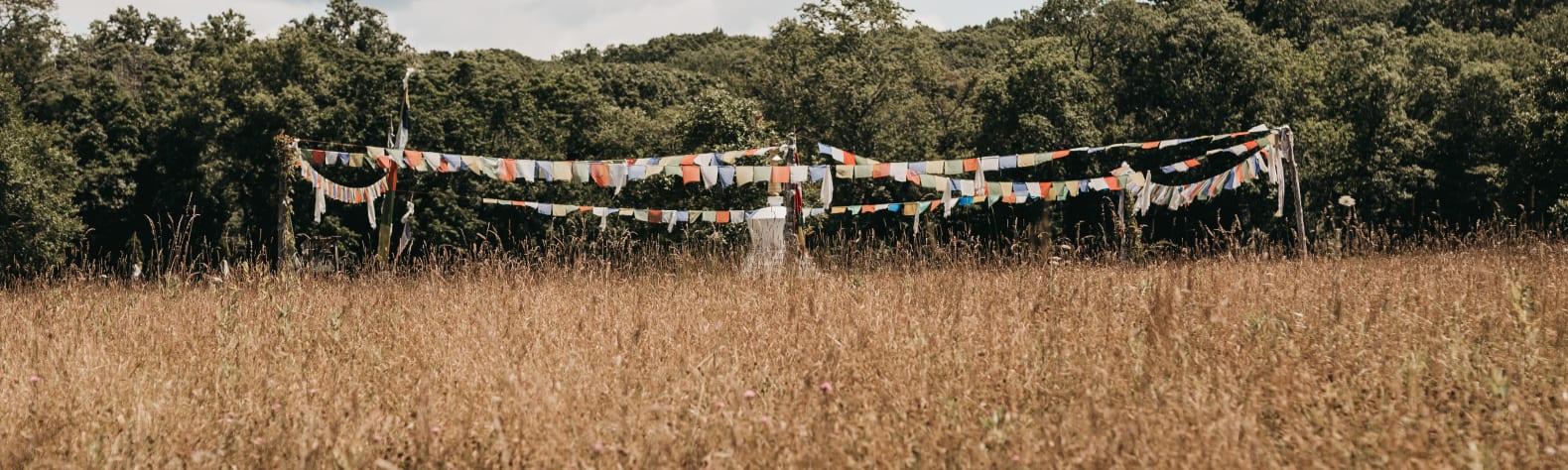 The Hay House Farm