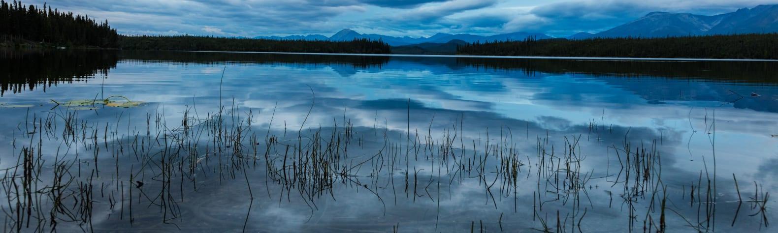 Wrangell-St Elias National Park and Preserve