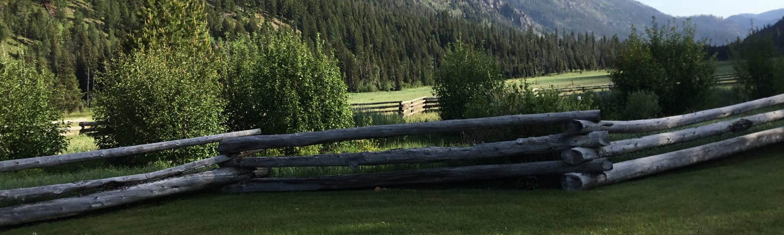 Wapiti Meadow Ranch