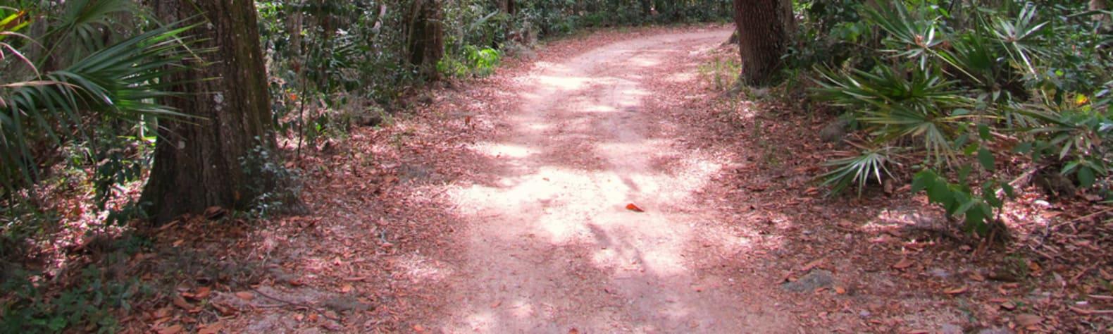 Timucuan Ecological & Historic Preserve