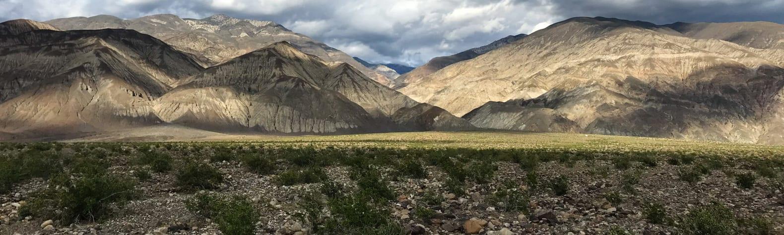 Death Valley Stargazing Camp