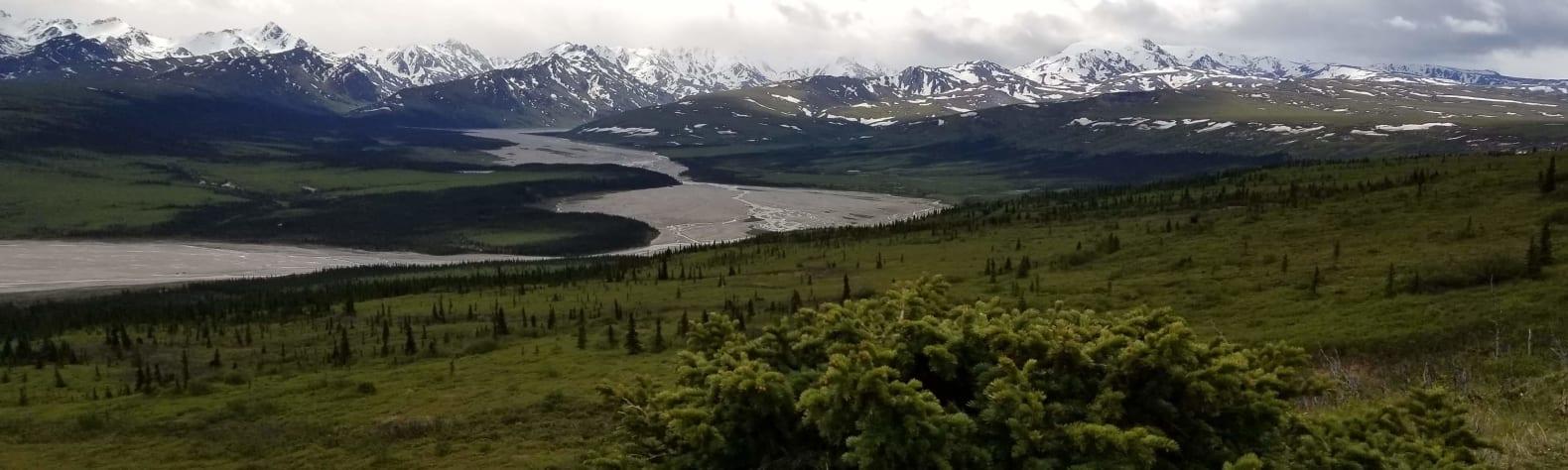 The Alaskan Experience
