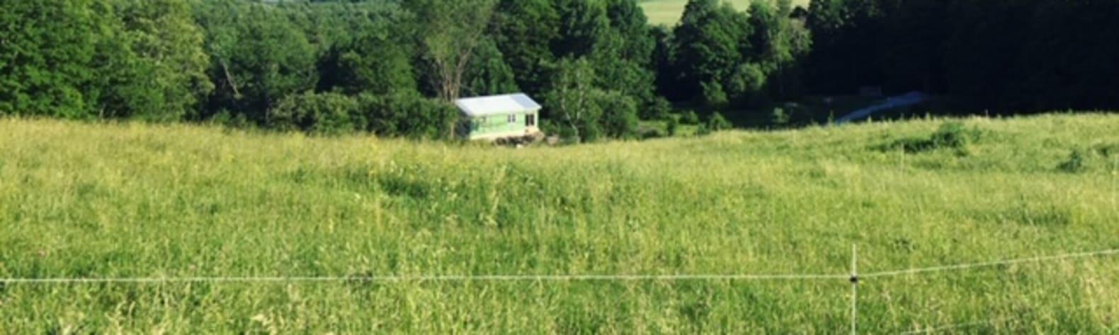 Squier Family Farm