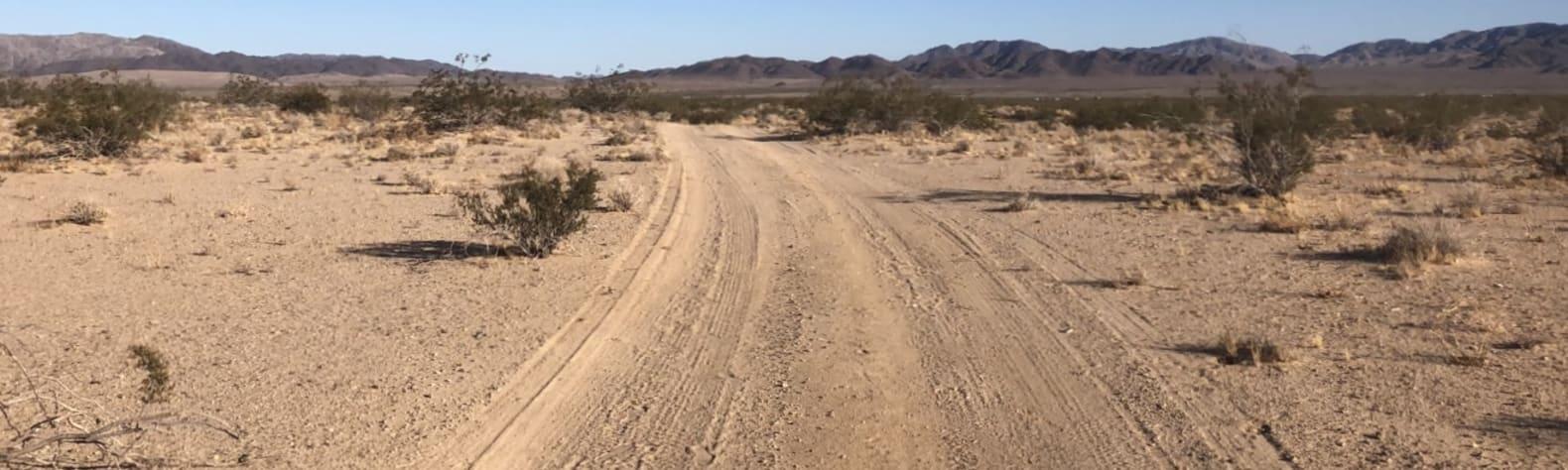 DESERT SOLITUDE ~20 min to JTNP
