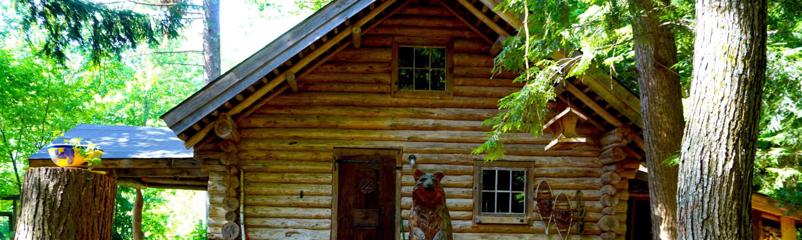 Bear Tree Homestead