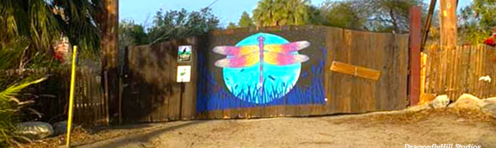 DragonflyHill Desert Farm