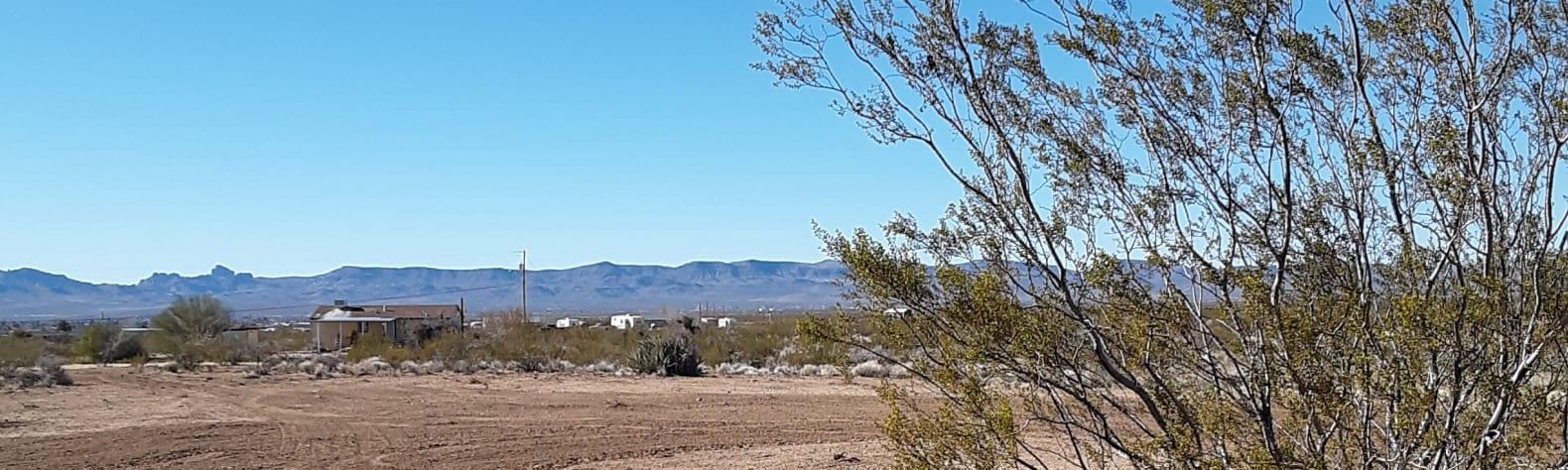 Desert Style Living