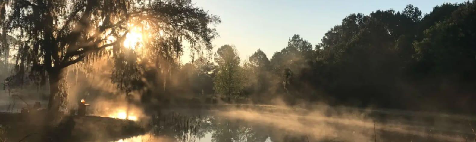 Wildflower Pond