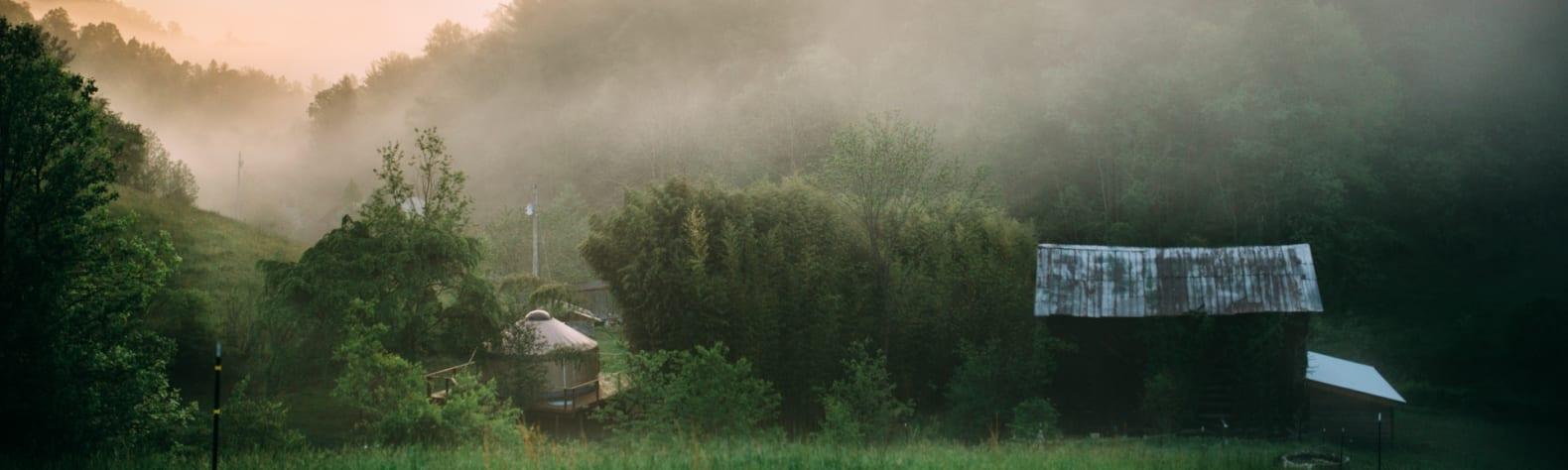 Mountain Cove Farm and Getaways