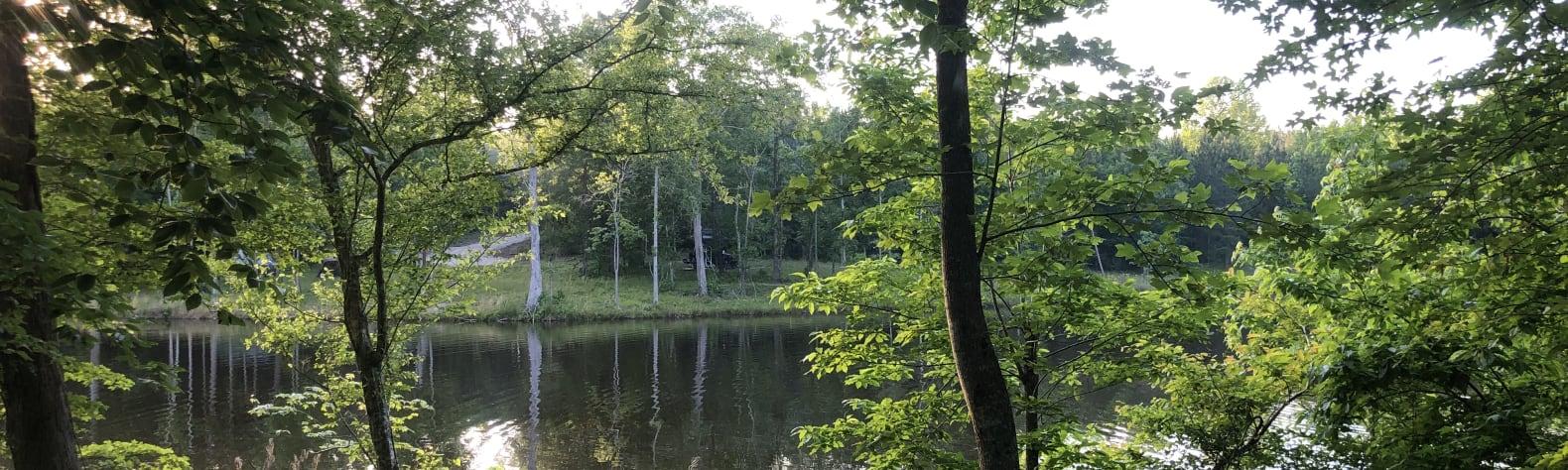 Lakeside Retreats @ Walnut Hill