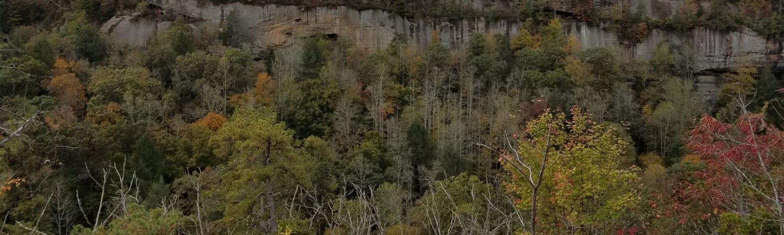 The Lookout on Raven Ridge