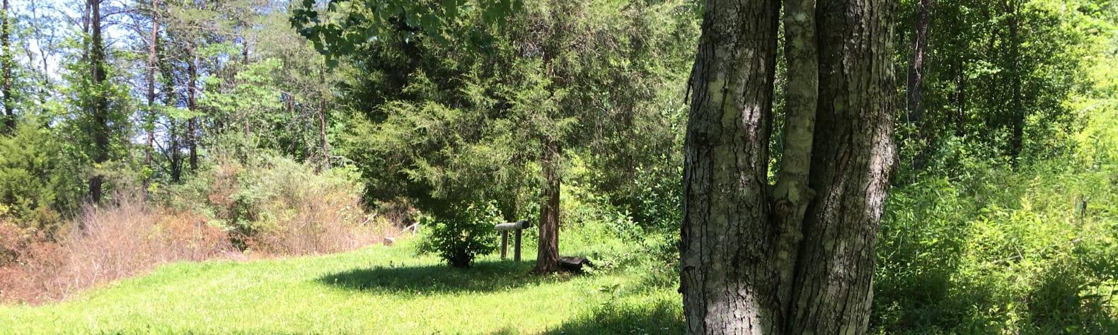 Kentucky Foothills Retreat