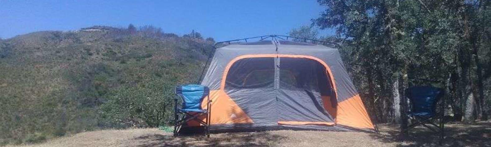 Pura Vida Springs Ranch