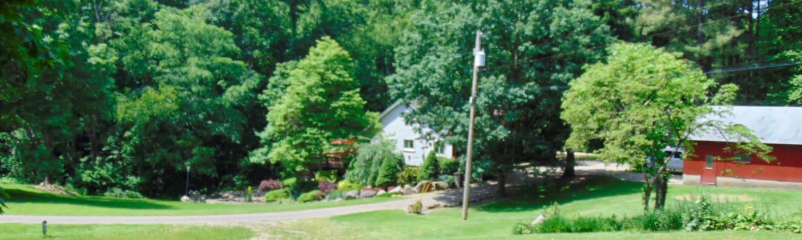 Bill S. and Nancy's property