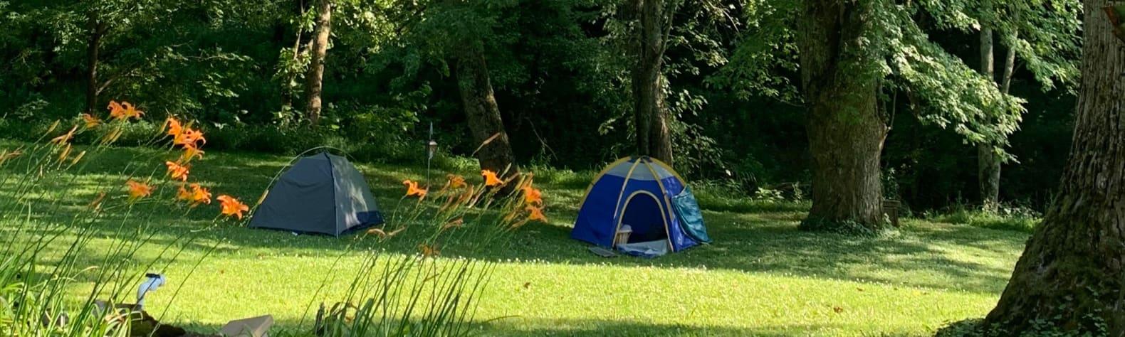 Little Blue Horse Camp