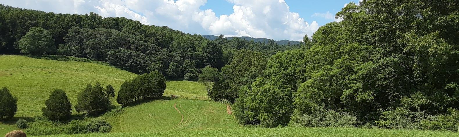 Beverly G.'s Land