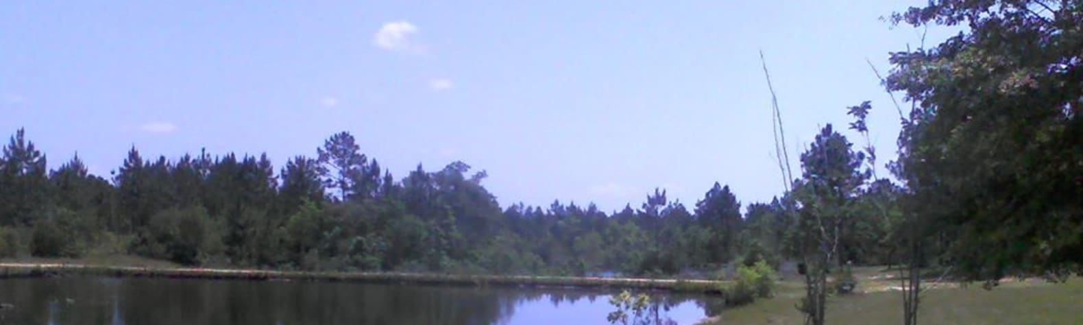 Robert C.'s Land
