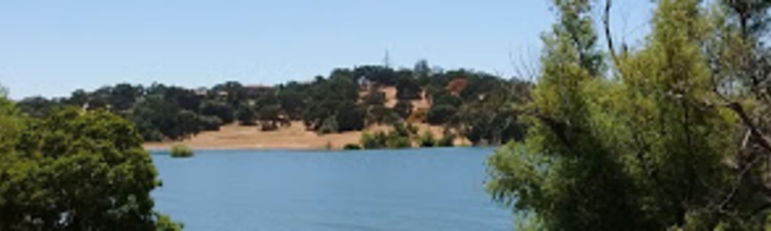 Barbara D.'s Land