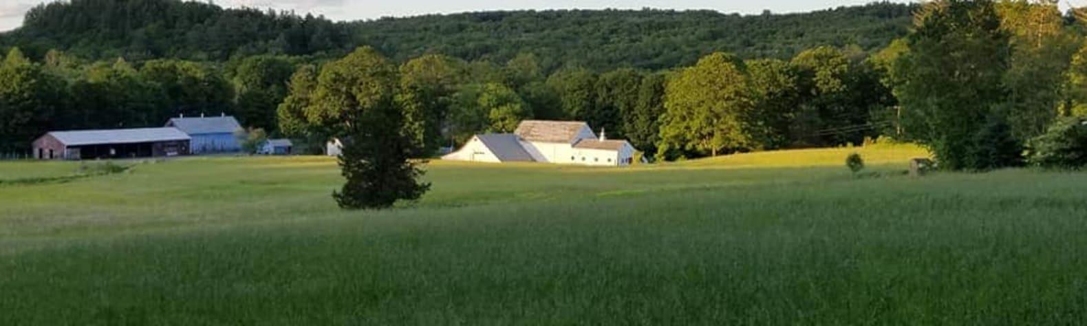 Anne C.'s Land