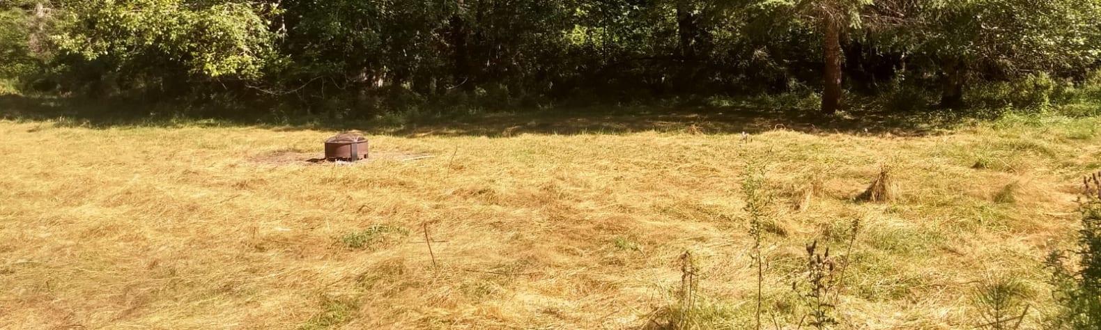 Noble Gryphon Homestead Farm