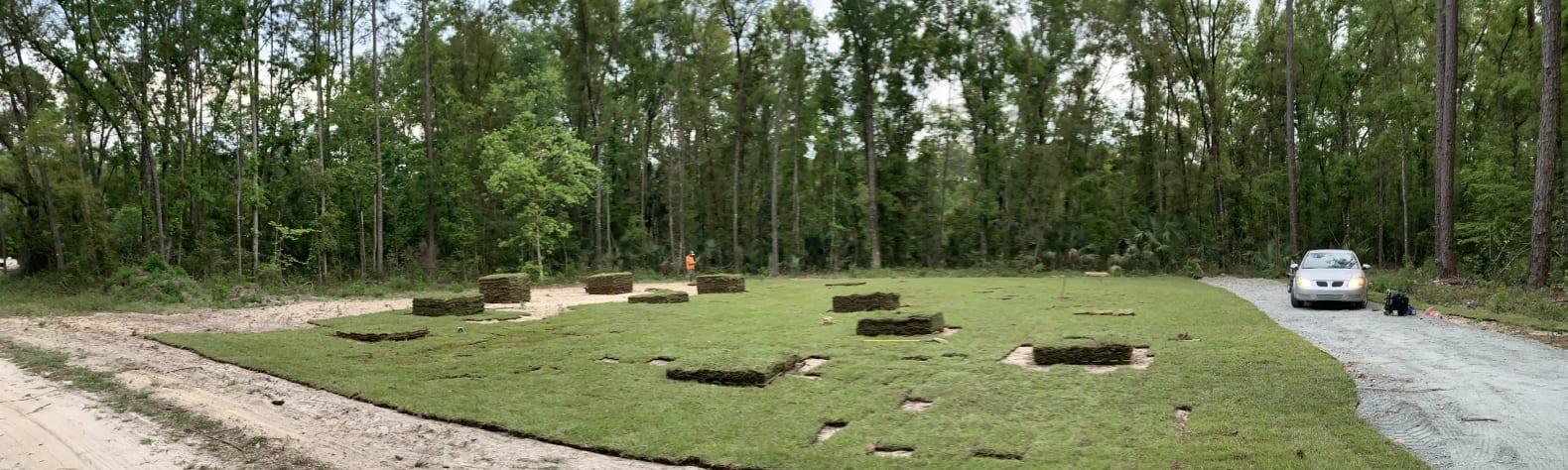 Vishal P.'s Land