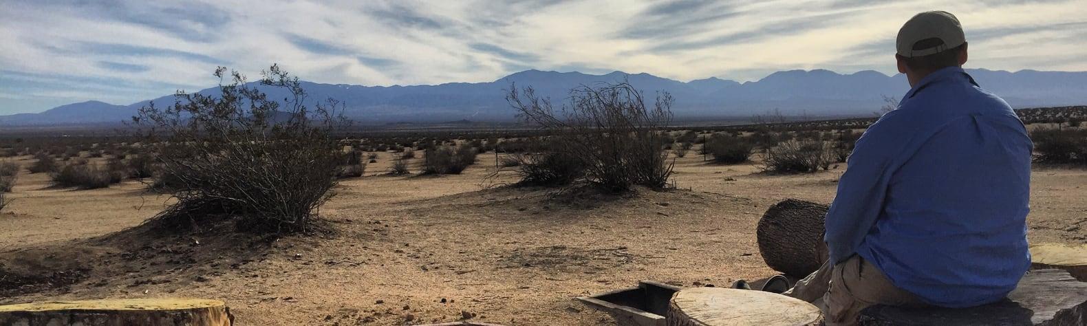 Camp Desert Dawgs