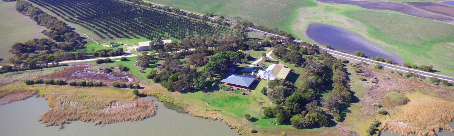 Jury Road Orchard - Farm Stay