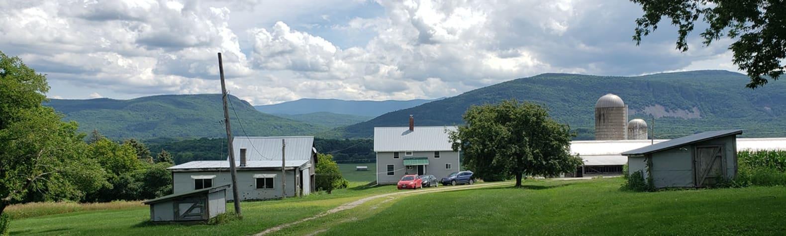 Scenic Root Farm