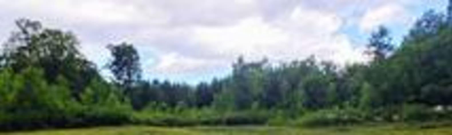 Wanda H.'s Land