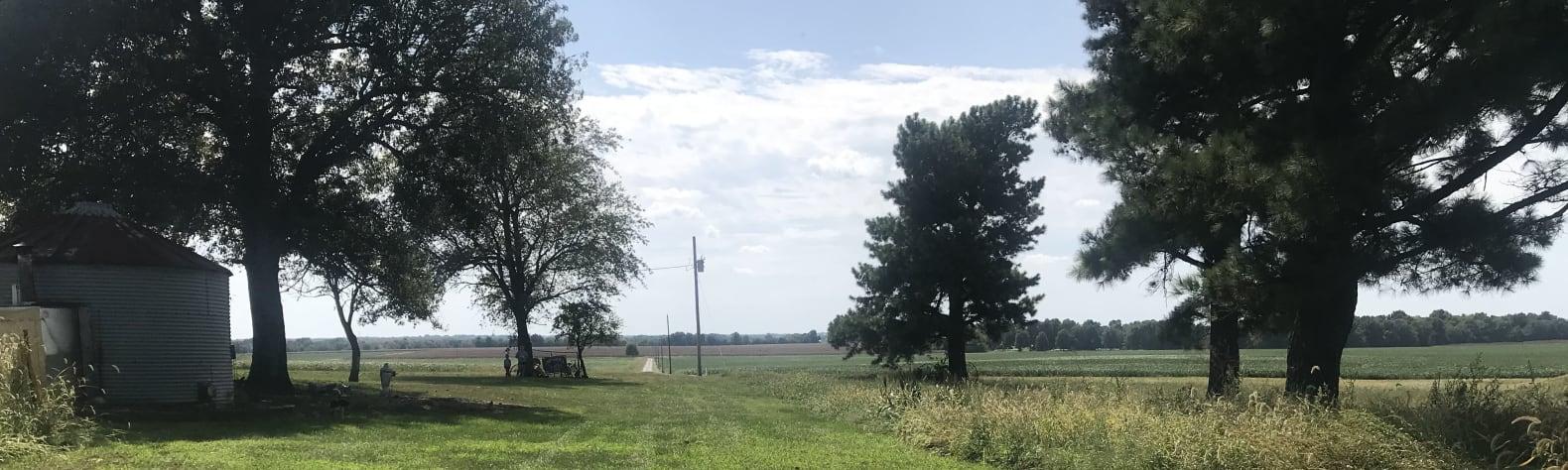 Angie G.'s Land