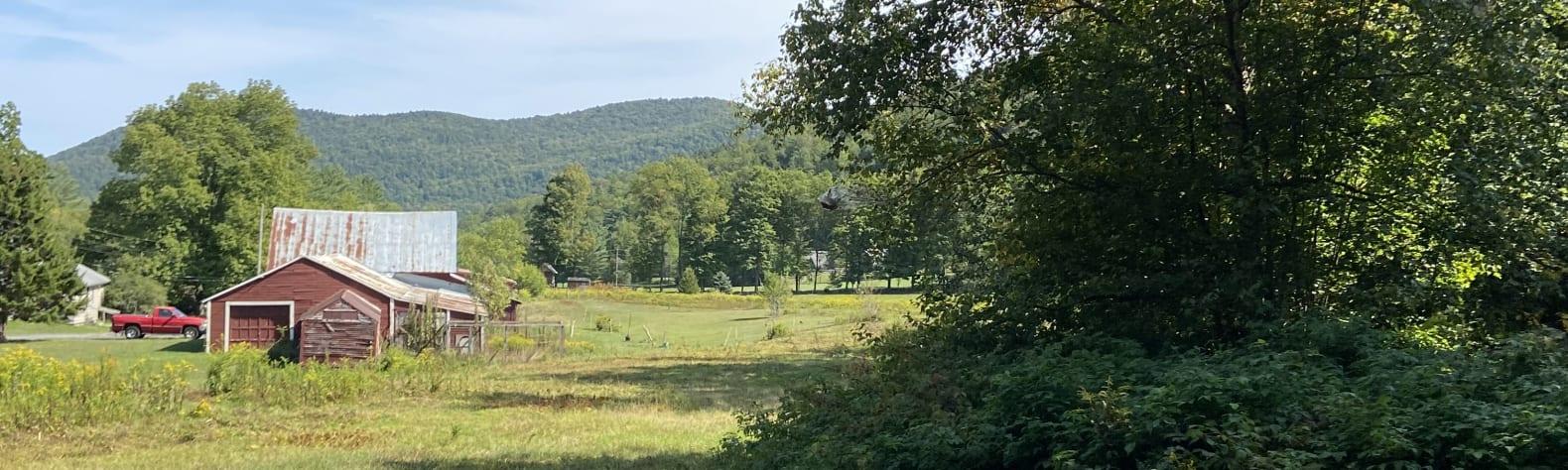 Nancy W.'s Land