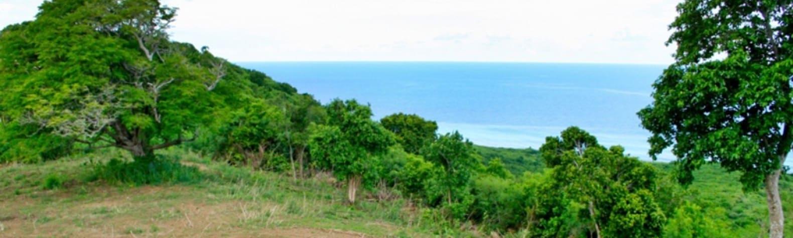 Ronald R.'s Land