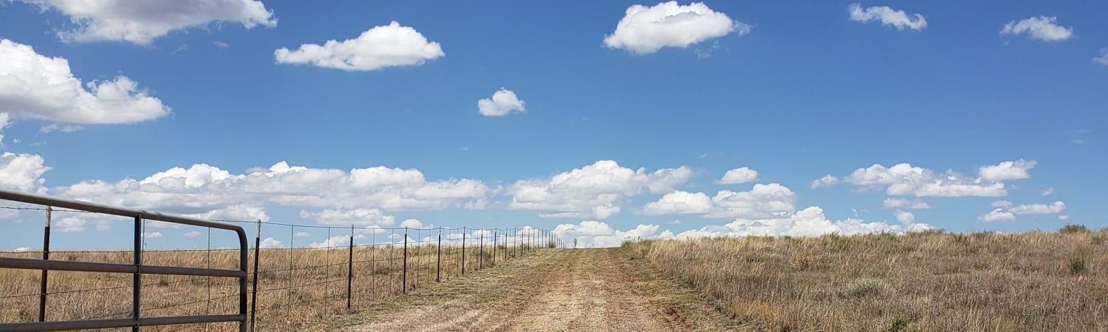 Miguel  M.'s Land