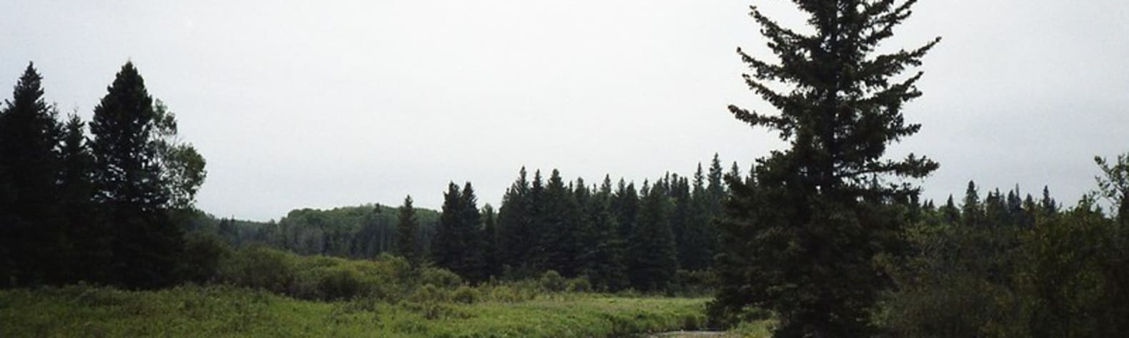 Riding Mountain National Park