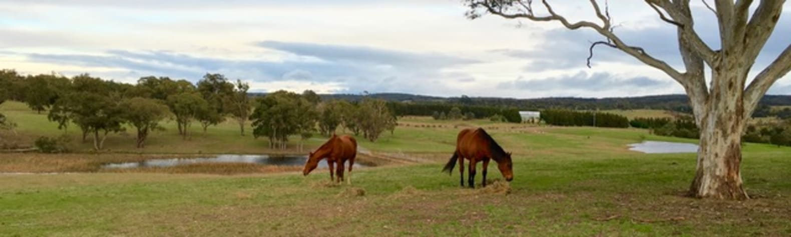 'Almosta Ranch', Windellama