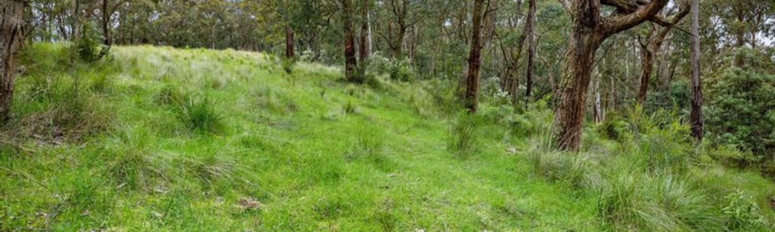 Secluded Otways Forest Camp