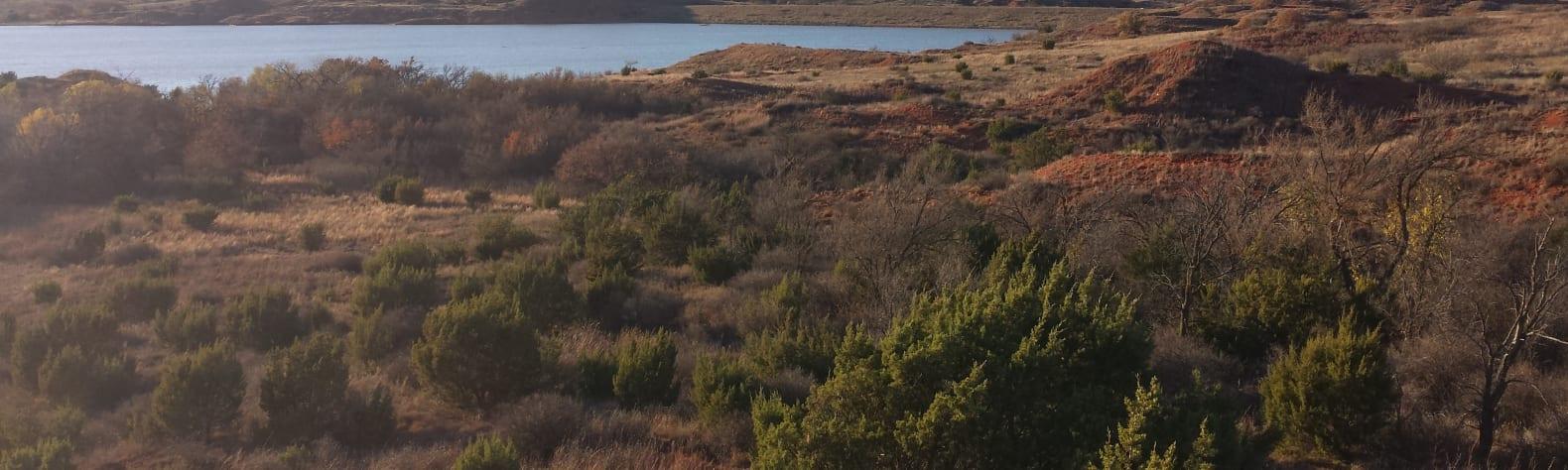 Black Kettle National Grassland