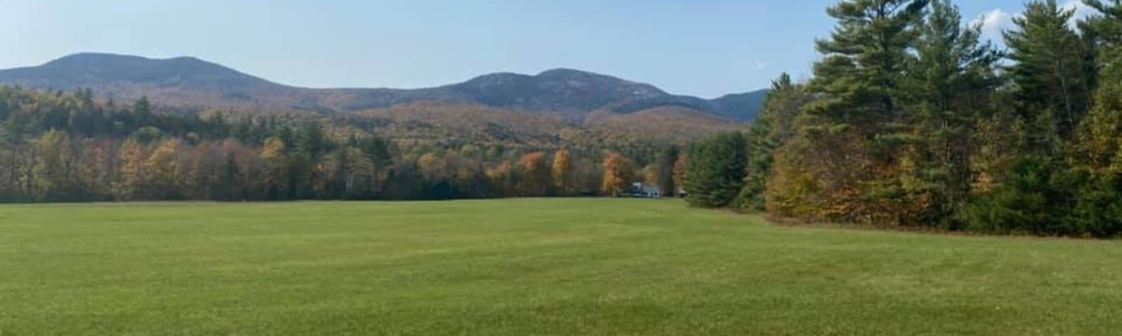 Carolyn L.'s Land