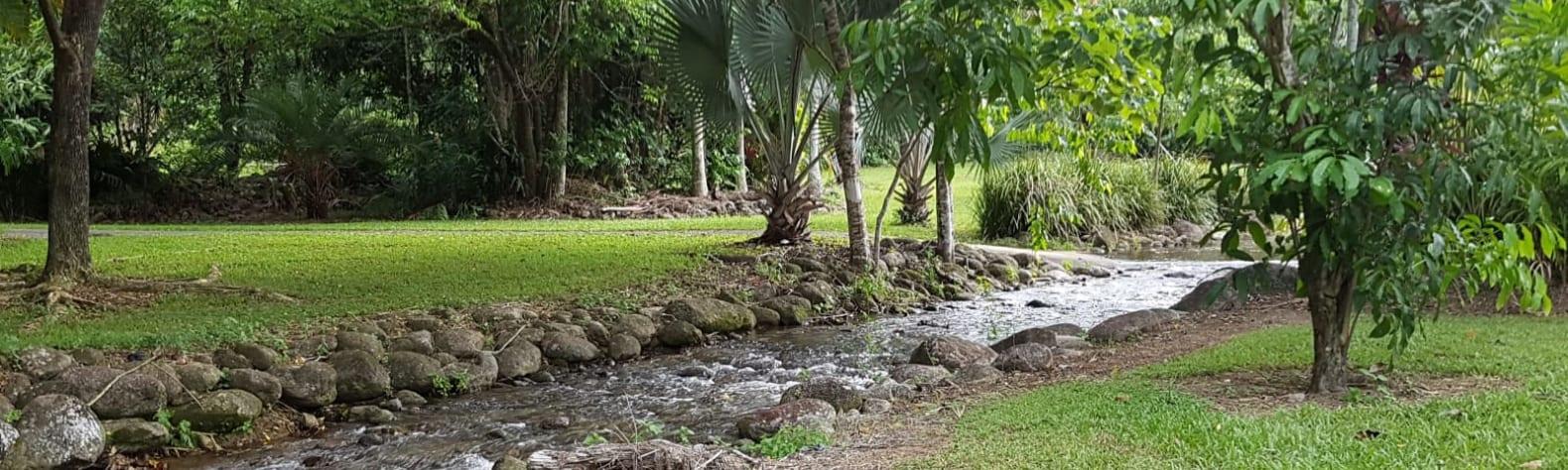 Bellenden Rainforest Retreat