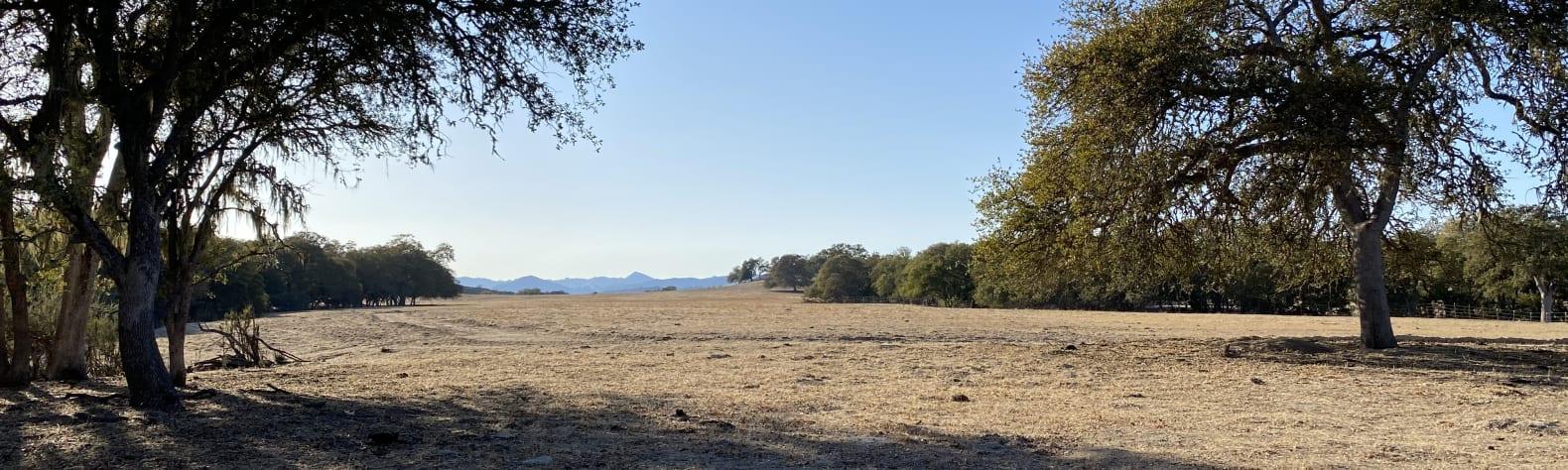 Smith Ranch