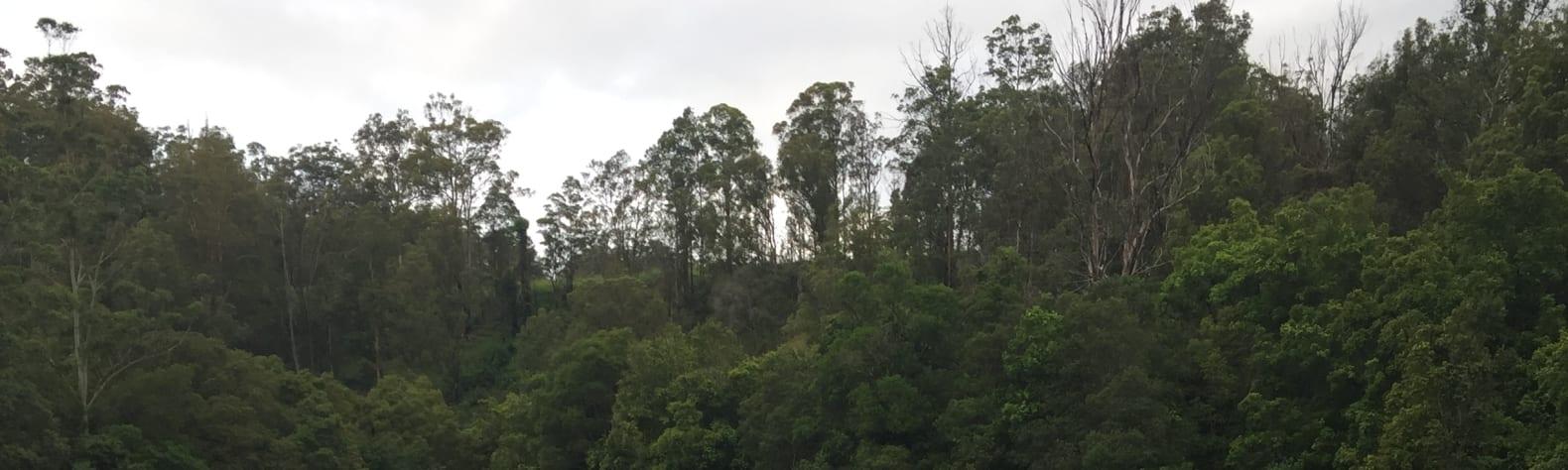 Hidden Valley, Mooral Creek