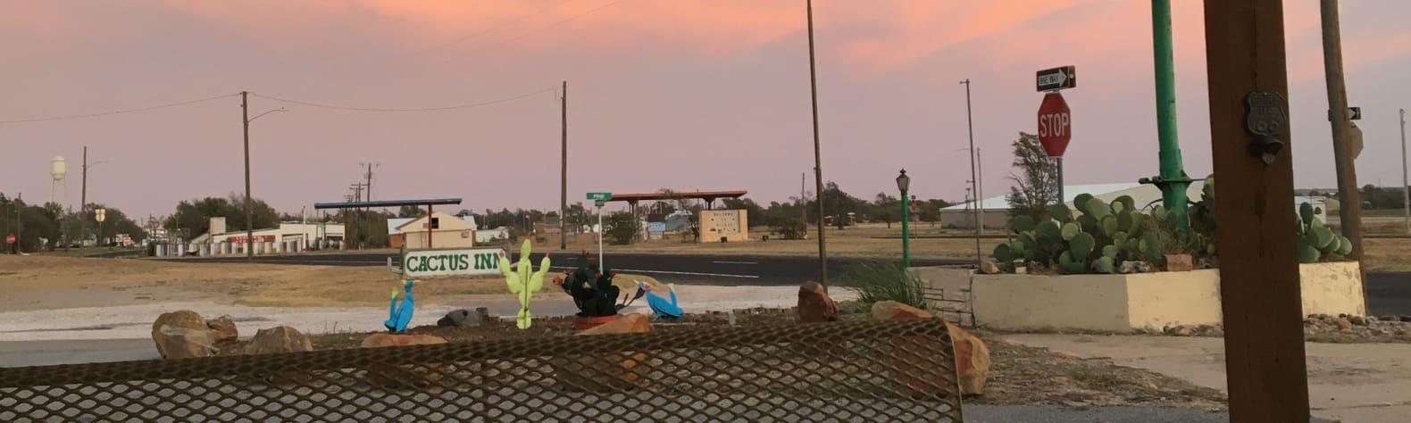 Cactus I.'s Land
