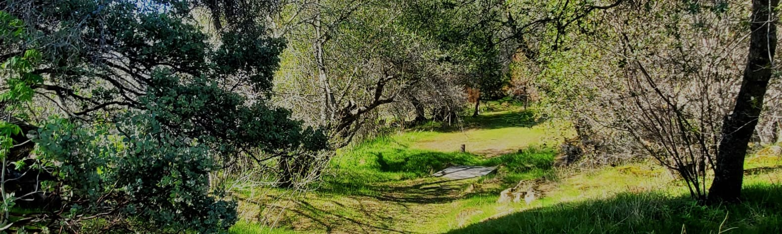 Hillside Gateway to Sierras