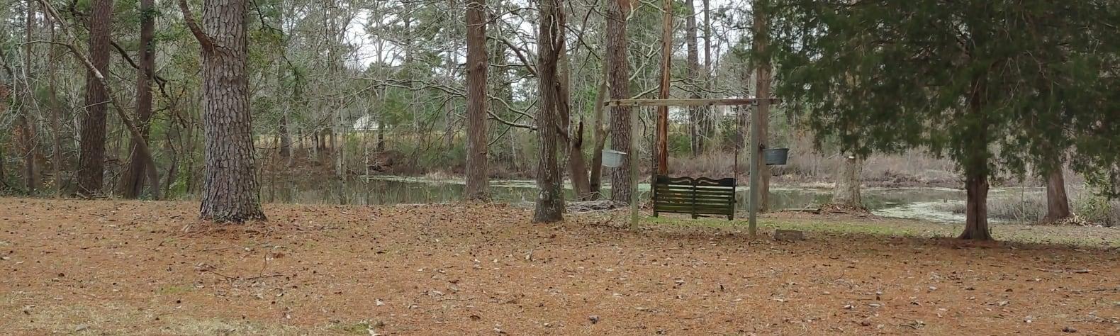 Walden's Pond