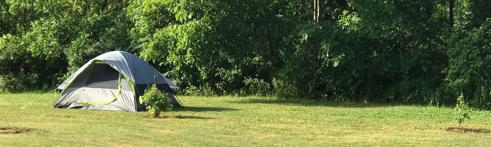 Fitz Farm Manor Camping
