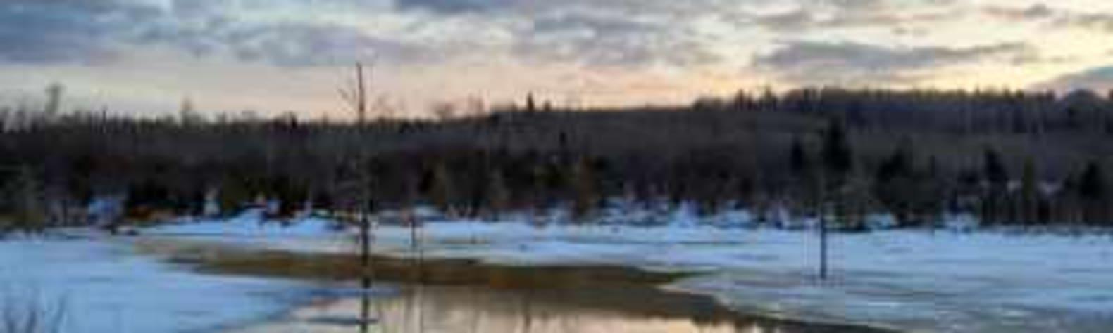 John C.'s Land