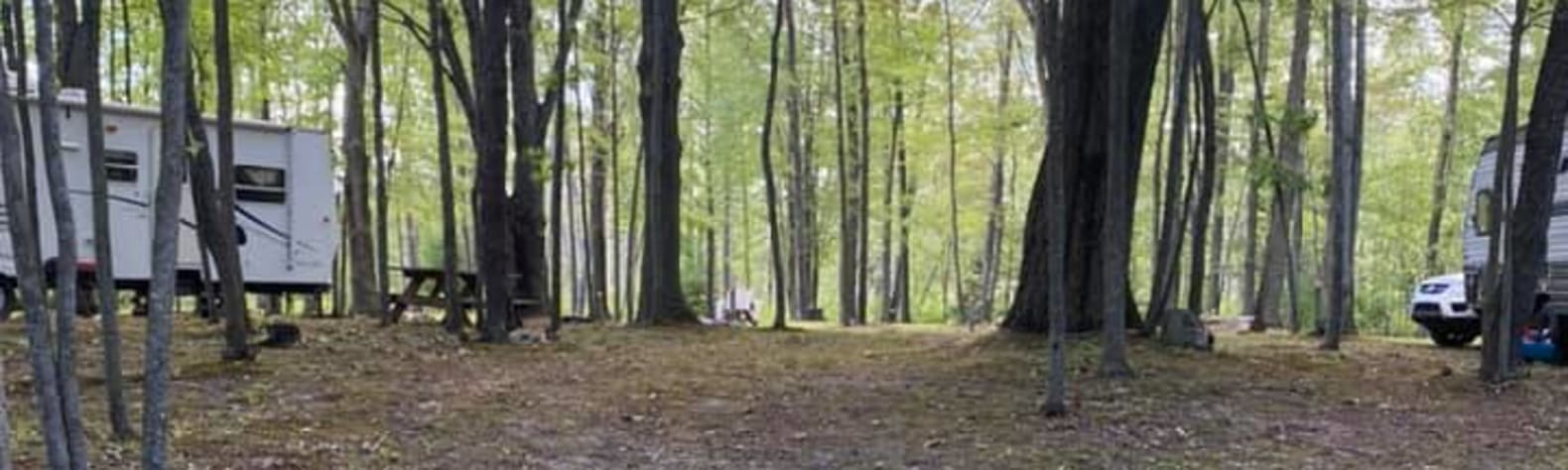 The Lost Oaks Campground